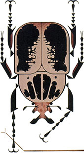 Beetle | Charley Harper Prints | For Sale