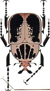 Beetle | Charley Harper Prints | For Sale