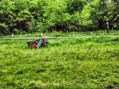 sarah_cart3 (1 of 1)_Snapseed