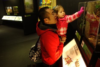 Checking out some huge insects in the insectarium