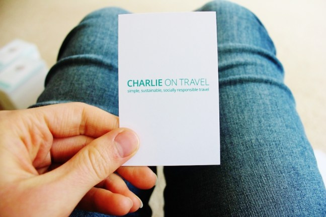 Charlie on Travel travel blog buisness cards 13