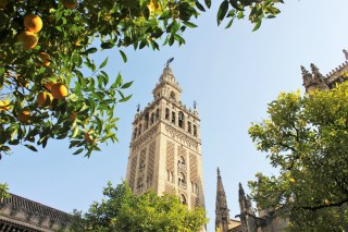 Slow Travel in Seville Cathedral
