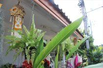 Our cute Thai house 2