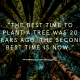 Music, Quotes & Coffee - picture of a quote about planting a tree