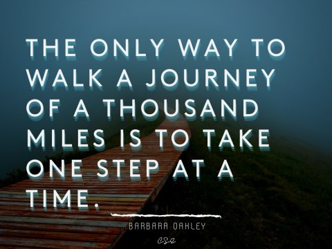 The only way to walk a journey of a thousand miles is to take one step at a time - Barbara Oakley