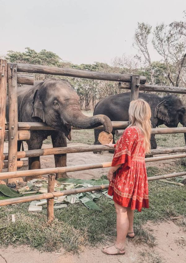 How to Visit an Ethical Elephant Sanctuary – Elephant Valley Thailand