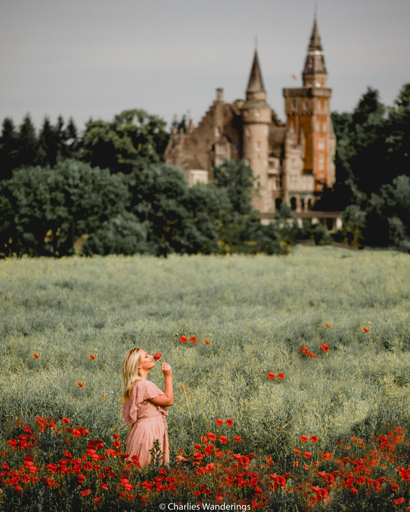Girl in peony field in front of a castle