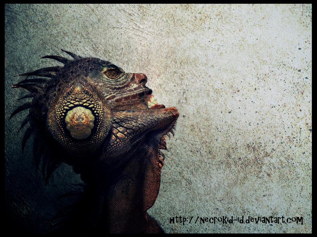 Takie tam hybrydy ludzko - smocze. Źródło: http://www.deviantart.com/art/Evolution-164867042