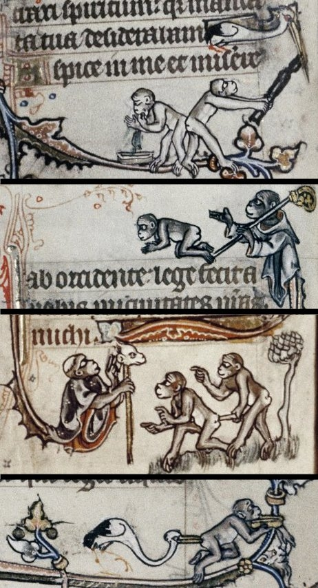 Primates (naczelne) Psalter, England 13th century. Bodleian, MS. Douce 6, margins