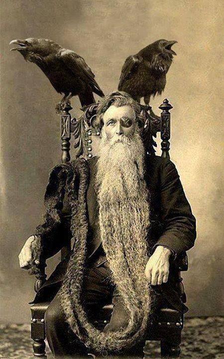 Takiego majestatycznego starca znalazłem. Źródło: pinterest.com