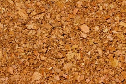 Cork_closeup