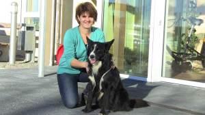 Therapiehund Bobby mit Frauchen Irene