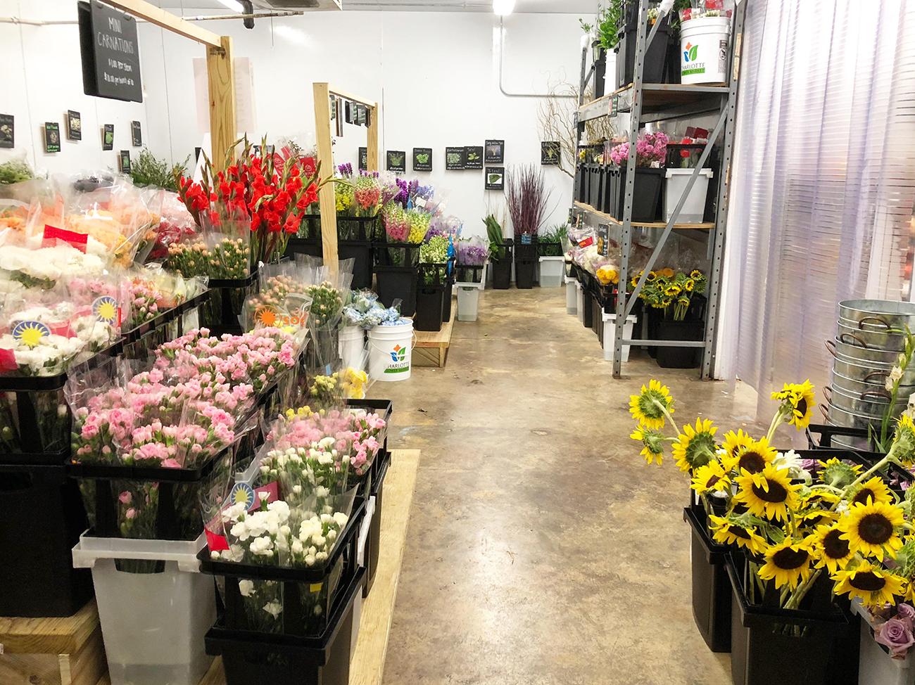 This Wholesale Flower Market Will Teach You To DIY Your