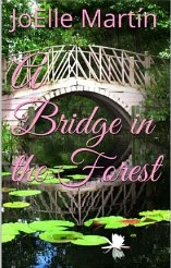 A bridge in the Forest  by JoElle Martin