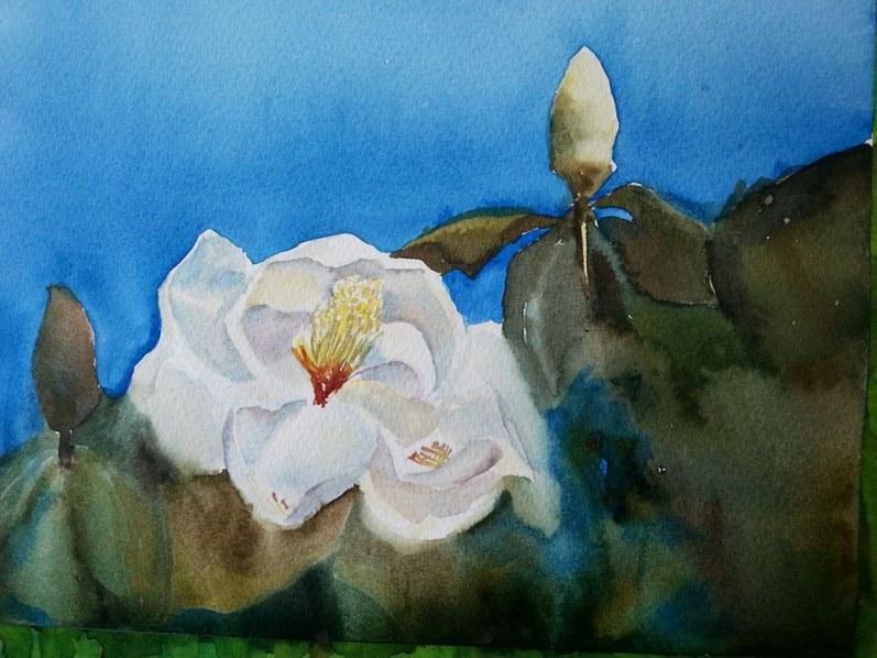Top Magnolia