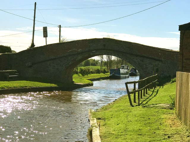Down-By-The-Canal-1