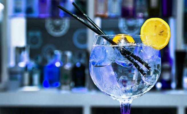 Gin Tonics Charlotte