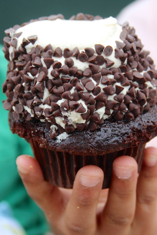 chocolate cupcake with frosting and mini chips
