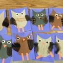 owls pre-k 2