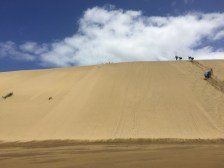 Sand dune I went down, but only once!