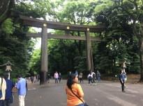 Gates to Meiji Shrine