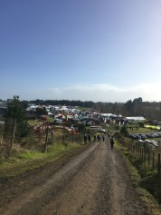 The walk down into Field Days. This photo does not do the grand scale of things justice