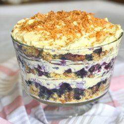 Blueberry Banana Coconut Trifle