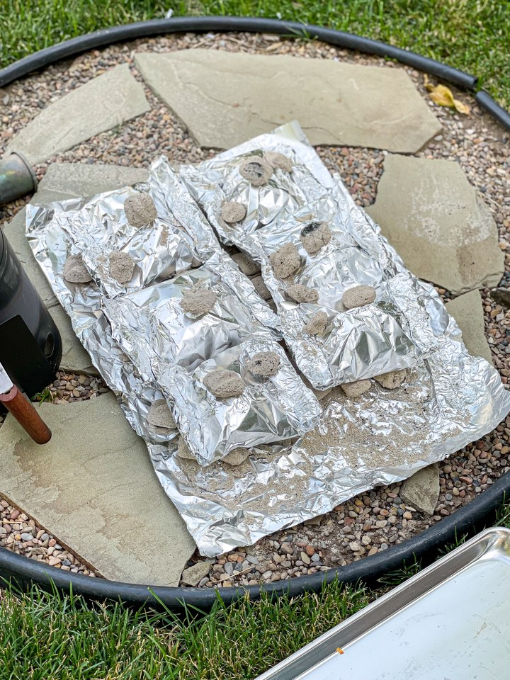 Tin Foil Packets on Hot Coals