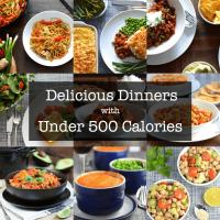 meals under 500 calories title