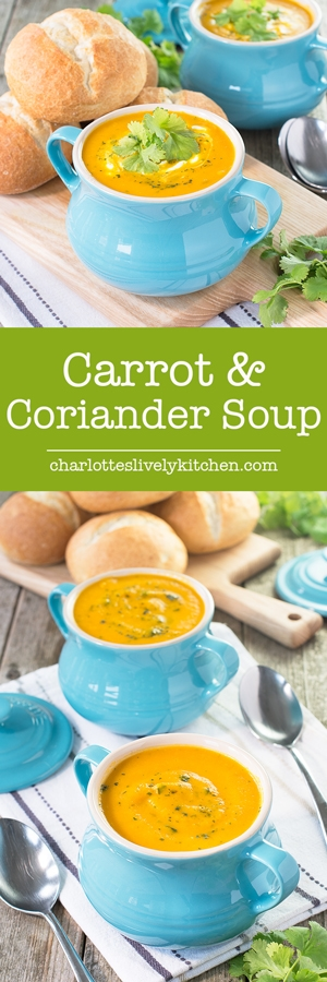 Charlotte S Daily Soup Kitchen