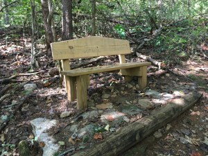Bench on a trail in Ivy Creek Natural Area