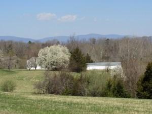Mountain View in Advance Mills Farm Neighborhood