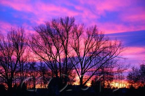 Sonnenuntergang6, Autor: Charlotte Moser