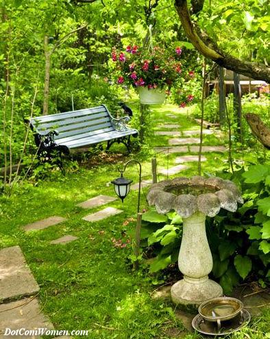 舗装の近くの庭のベンチ
