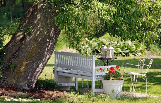 ツリーの下の塗装の庭のベンチ