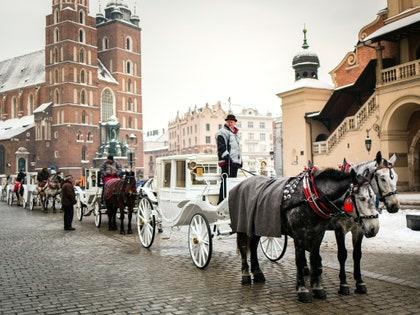 画像に含まれる可能性のあるもの:ホイール、機械、動物、哺乳類、馬、人間、人、乗り物、交通機関、馬車、ワゴン