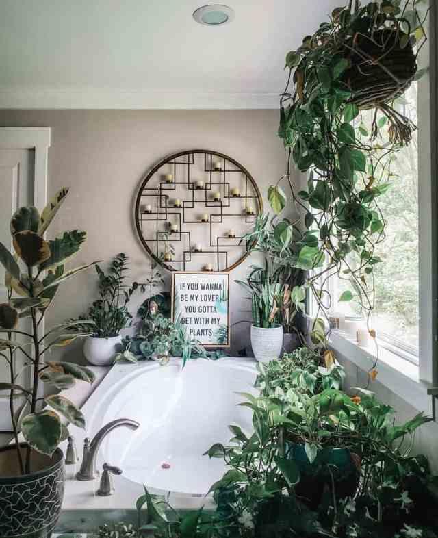 バスルーム屋内ガーデンのアイデアbelybaila