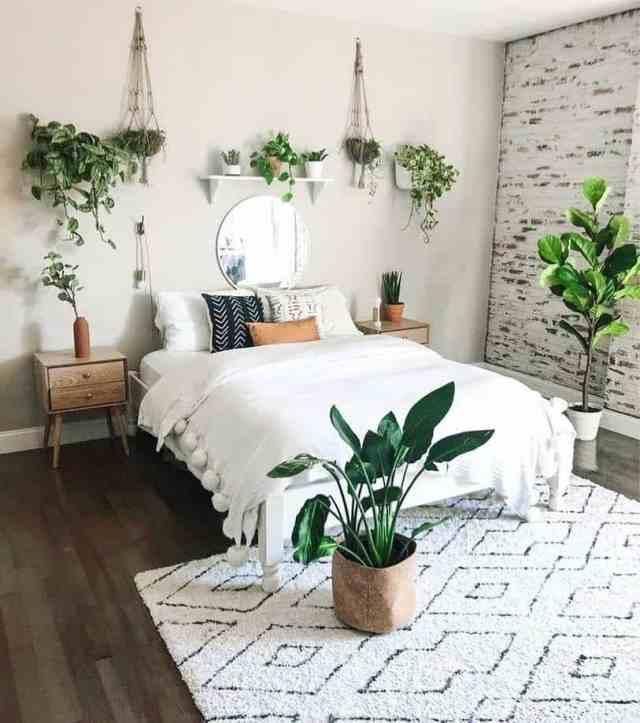 寝室の屋内庭のアイデアphyta_co_uk