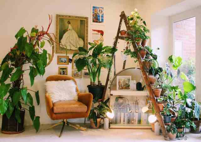 垂直屋内庭園のアイデア植物学