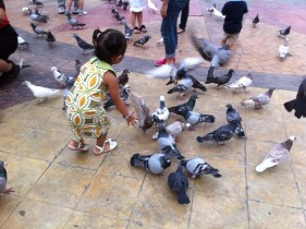 ysa trying to feed the birds