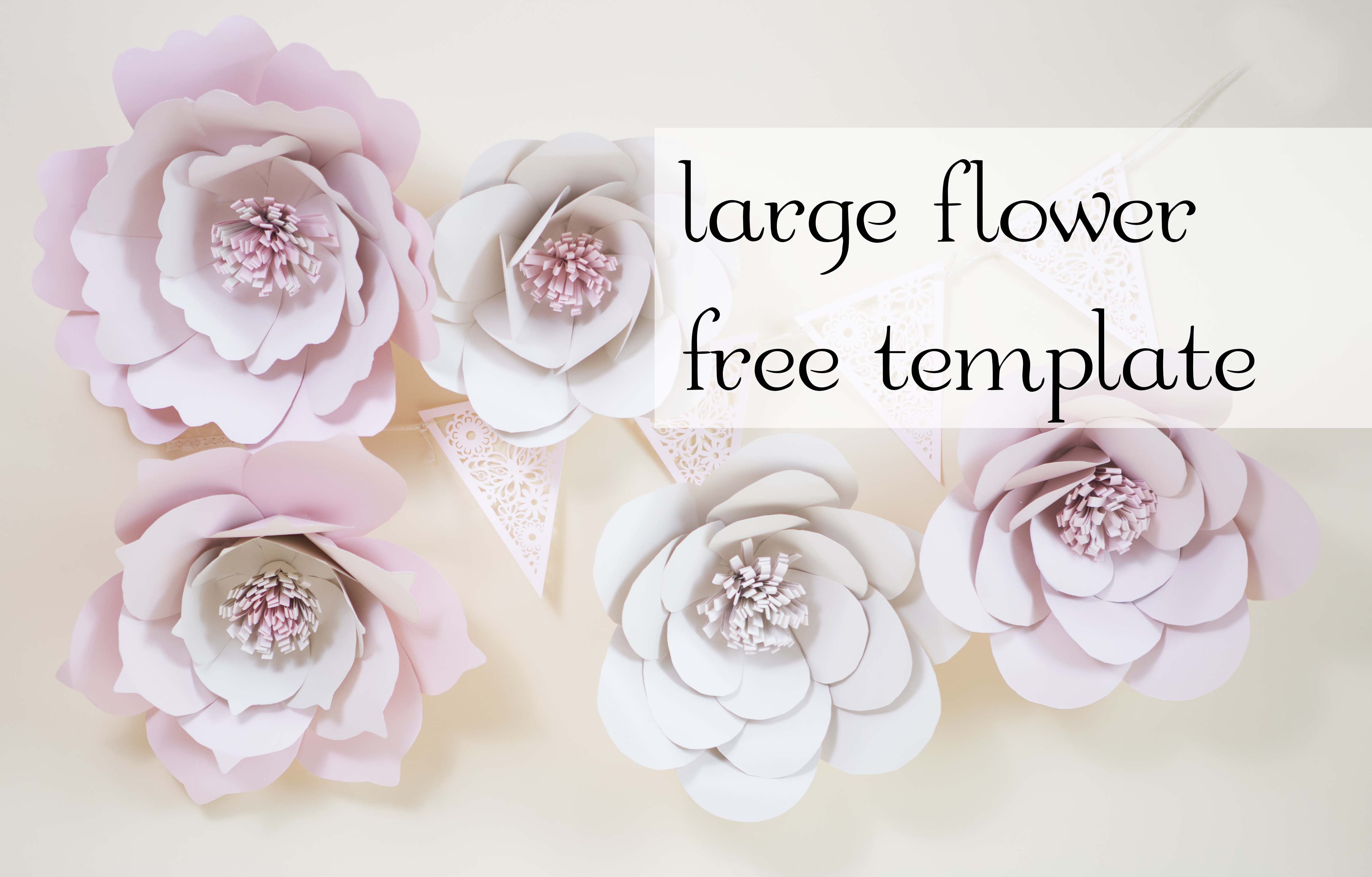 Giant Paper Flowers Free Template Charmed By Ashley