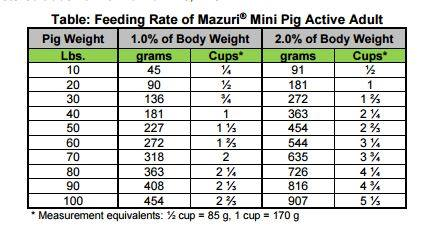 Pot Belly Pig Diet - What's a Good Diet for a 1 Month Old Pot Belly Piglet?
