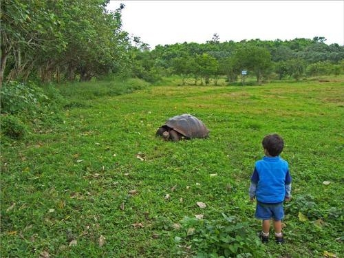 Galapagos Islands Family Travel Guide 2