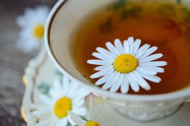 chamomile-tea-charmposh-herbal-teas-for-kids