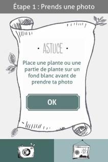 L'herbier digital de l'Institut Klorane (1)- Charonbelli's blog lifestyle