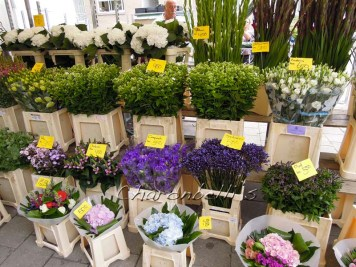 Et si on (re)partait a Amsterdam ? #cityguide -marché (1) - Charonbelli's blog de voyages