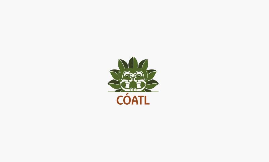 COATL-fast-good-mexicain-Toulouse-Charonbellis-blog-lifestyle