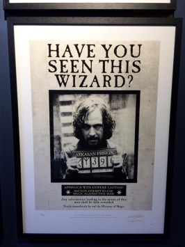 Sirius-Black-Exhibition-Harry-Potter-House-of-MinaLima-London-Charonbellis
