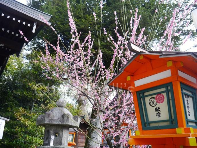 Japon-Visiter-Kyoto-en-5-Jours(1)-Charonbellis