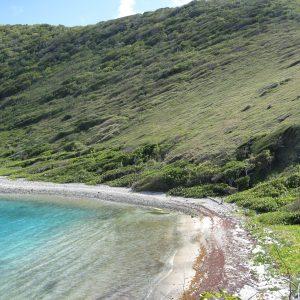 Ginger Island, British Virginia Islands, Photo By: tamarinda2011 (Source: Flickr)